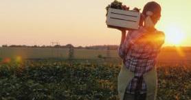Organik Tarım Yapacak Çiftçilere 6 Öneri