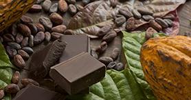Evde Çikolata Yapımı ve 3 Tarif Önerisi