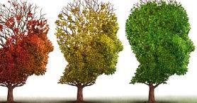 Beyninizi Dinç Tutmaya Yardımcı Olacak 9 Besin