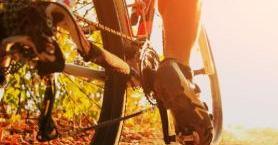 Adrenalin Dolu Ekstrem Spor, Dağ Bisikleti