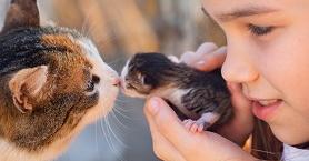 Evcil Hayvanla Büyüyen Çocukların Kazanacağı 5 Özellik