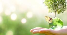 Organik Bir Yaşamı Vadeden Avrupa Yeşil Mutabakatı Nedir?