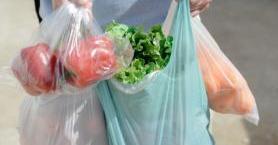 Plastik Poşetlerin Doğamızda Bıraktığı İzleri Biliyor Musun?