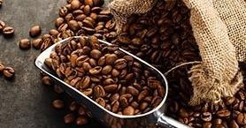 Kokusuyla Cezbeder, Tadıyla Mest Eder Kahve…
