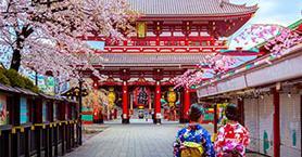 Kiraz Çiçeklerinin İzinde Bir Japonya Gezisi