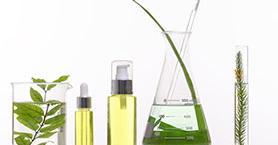 Bitkisel Ürünler Kullanırken Dikkat Edilmesi Gereken 7 Şey