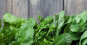 Muhtemelen Çok Nadir Tükettiğiniz Bu 7 Yeşile Hak Ettiği Yeri Verin!